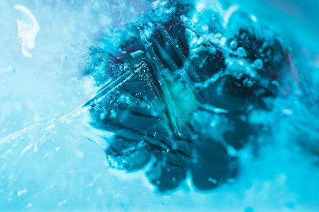 Framboesas congeladas