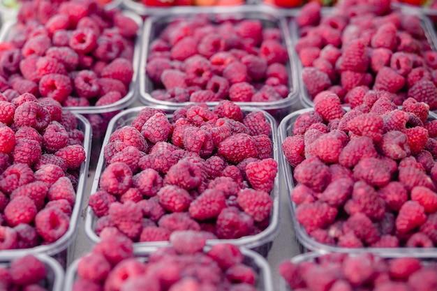 Framboesas em caixa de recipiente de plástico transparente para o mercado do fazendeiro de venda frutas frescas. foco seletivo