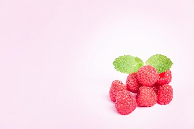 Framboesas maduras cruas com folha de hortelã fresca verde isolada no fundo rosa pastel.