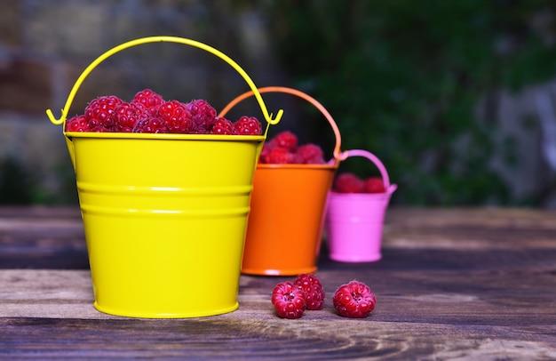 Framboesas vermelhas maduras em baldes de ferro