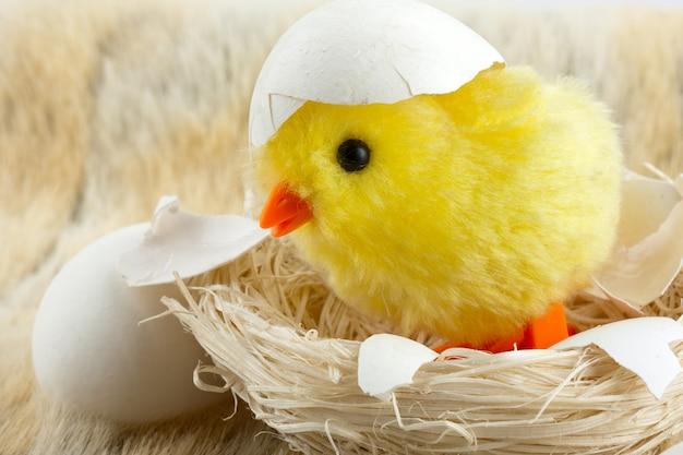 Frango bebê de brinquedo com casca de ovo