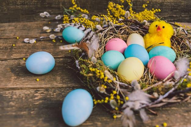Frango bonito close-up, amarelo com ovos de páscoa no ninho. no contexto de uma placa de madeira.
