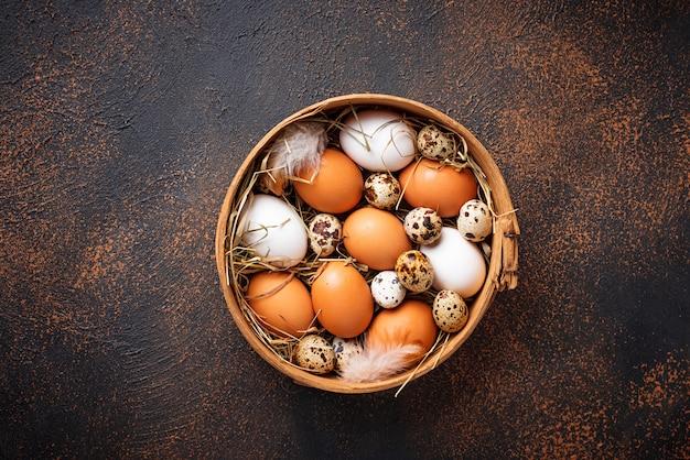 Frango cru fresco e ovos de codorna em peneira