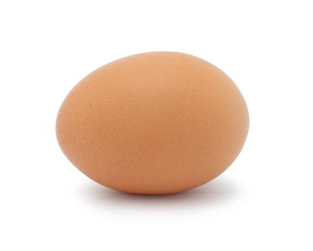 Frango de ovo isolado no espaço em branco.