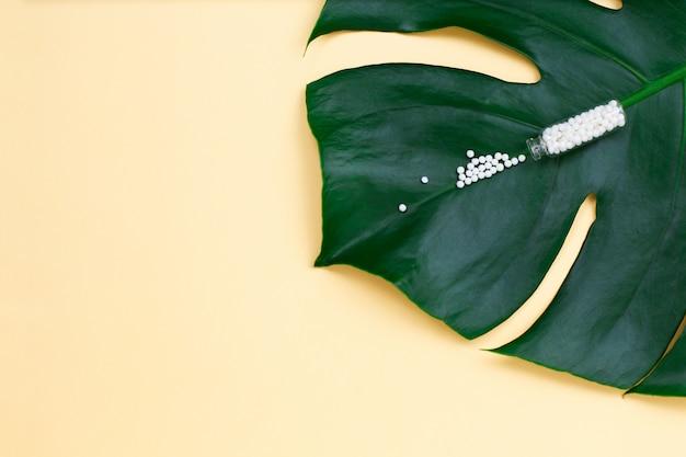 Frasco com comprimidos homeopáticos em folha de palmeira.