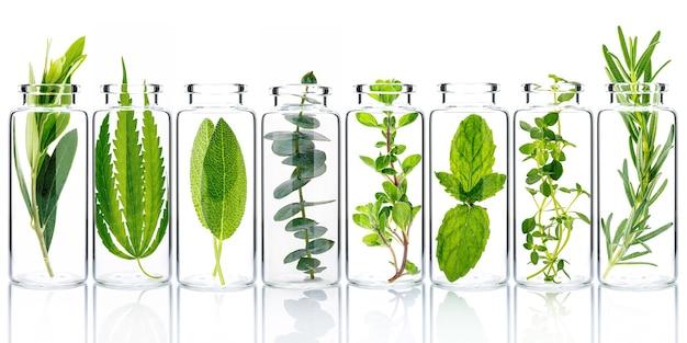 Frasco de óleo essencial com ervas frescas isolado em branco.