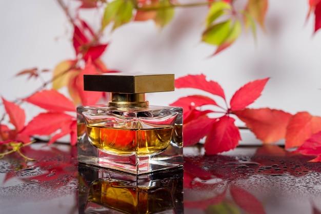 Frasco de perfume e fragrância vintage em uma superfície de vidro preta cercada por folhas de outono de uvas bravas e gotas de água, aroma de fragrâncias, cosméticos perfumados e água de toalete como marca de beleza de luxo