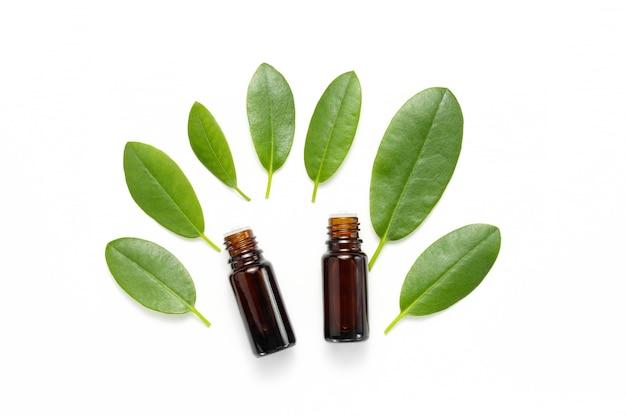Frascos com óleos essenciais e folhas verdes de plantas na vista superior do fundo branco