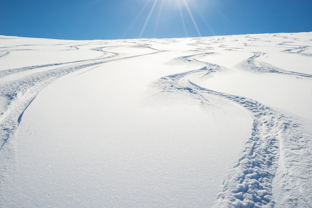 Freeride na encosta nevada fresca