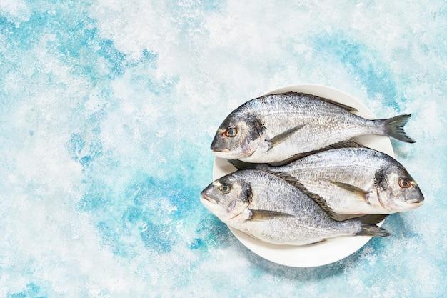 Fresco royal dorada no prato sobre fundo azul. conceito de comida saudável. vista superior, copie o espaço. conceito de frutos do mar mediterrâneo