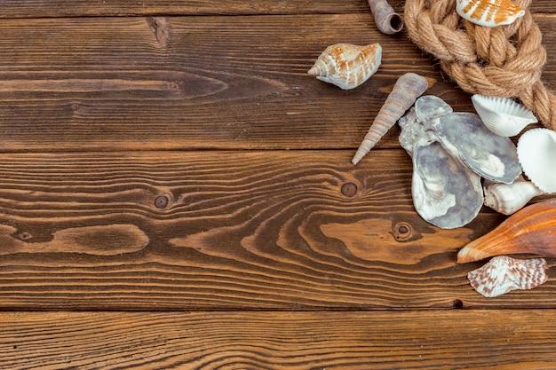 Fronteira de conchas do mar na madeira. fundo marinho