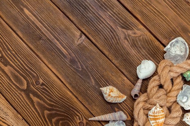 Fronteira de conchas na madeira, marinho