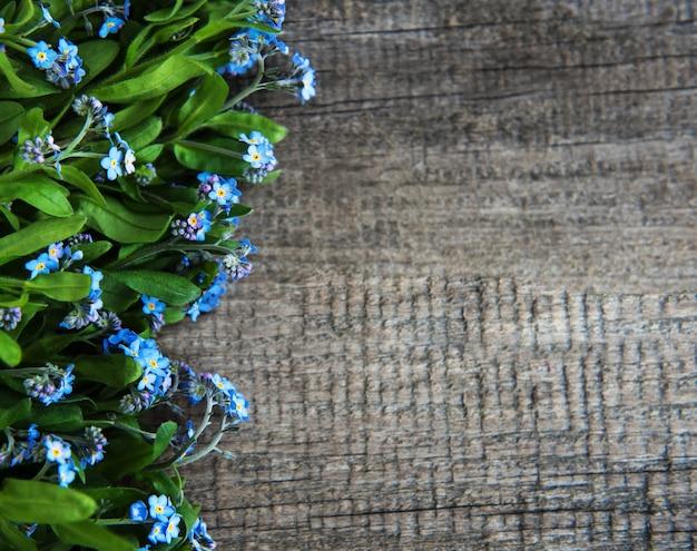 Fronteira de flores miosótis