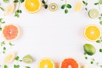 Fronteira de frutas e hortelã