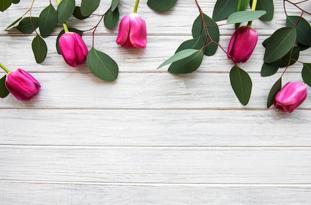 Fronteira de lindas tulipas