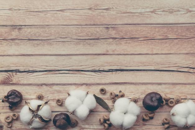 Fronteira de outono composição floral. flor e castanha macias brancas secadas do algodão na tabela de madeira.