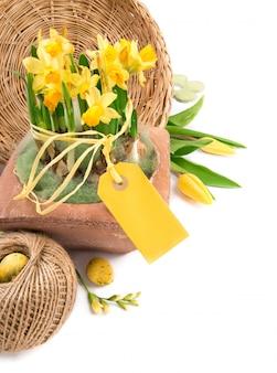 Fronteira de páscoa com tulipas amarelas e narcisos, espaço de texto