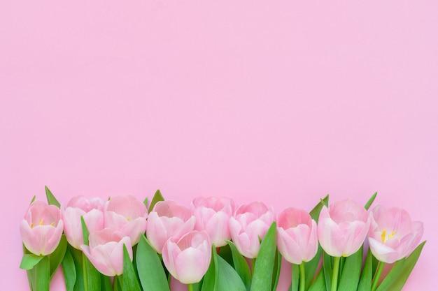 Fronteira de tulipas cor de rosa em fundo rosa. copie o espaço, vista superior. fundo de férias. postura plana do dia internacional da mulher, dia dos namorados, aniversário, conceito do dia das mães.