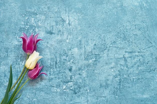Fronteira de tulipas vermelhas sobre fundo azul. copie o espaço, vista superior. cartão de felicitações. minimalismo