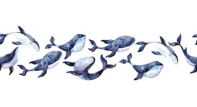 Fronteira sem emenda em aquarela com baleias azuis, ilustrações pintadas à mão isoladas no fundo branco, animais subaquáticos realistas.