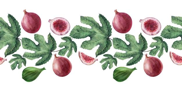 Fronteiras em aquarela com frutas e folhas de figueira