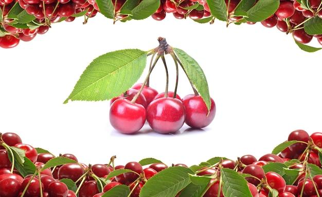 Fruta cereja