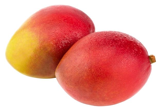 Fruta da manga com gotas de água. isolado em um branco.