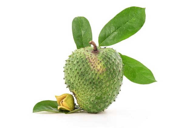 Fruta de graviola ou annona muricata, flores e folhas verdes isoladas no fundo branco com traçado de recorte.