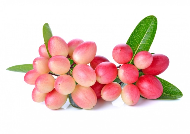 Fruta de karanda em branco b