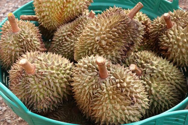 Fruta durian na comida de rua