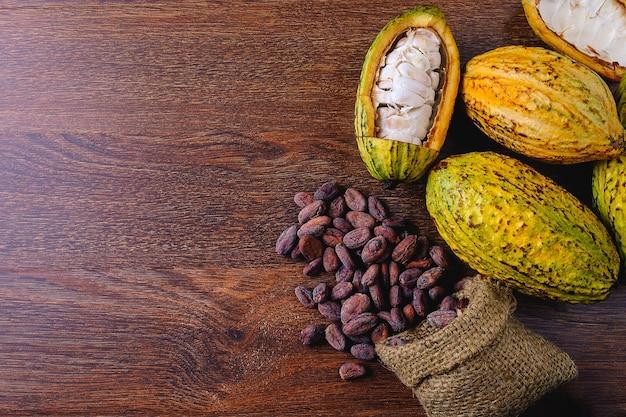 Fruta fresca de cacau com vagens de cacau e grãos de cacau