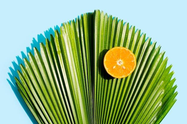 Fruta laranja e folha de palmeira