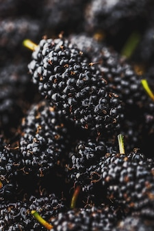 Fruta madura e fresca de amora preta