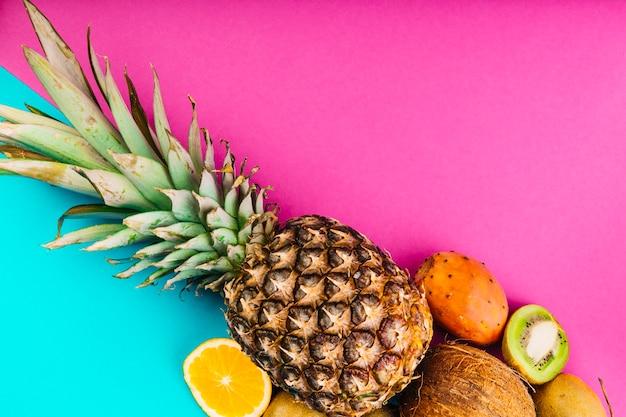 Fruta opuntia; abacaxi; coco; laranja e kiwi em fundo duplo-de-rosa e azul
