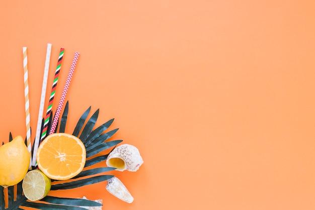 Frutas cítricas com palhas, folhas de palmeira e conchas