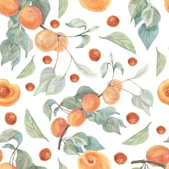 Frutas damascos ilustração aquarela mão desenhada sem costura padrão