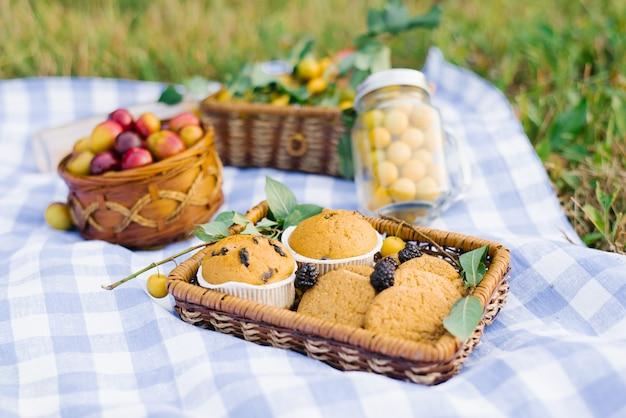 Frutas e bagas em cestas de piquenique em uma toalha de mesa quadriculada branca azul em um gramado verde e em bolos frescos.