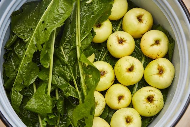 Frutas e legumes fermentados.