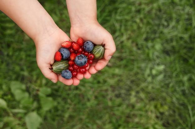 Frutas frescas nas mãos das crianças em um fundo de grama