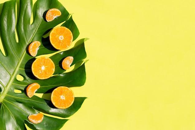 Frutas laranjas na folha de monstera