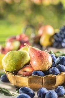 Frutas maduras na mesa do jardim. peras frescas em uma tigela de bronze rodeada por uma variedade de frutas do jardim.