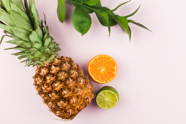 Frutas tropicais e folhagem verde