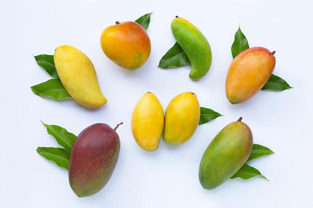 Frutas tropicais, manga com folhas no fundo branco.