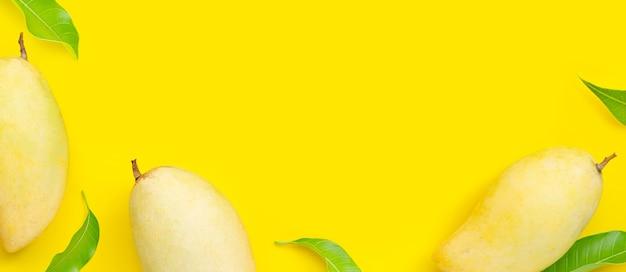 Frutas tropicais, manga em fundo amarelo. vista do topo