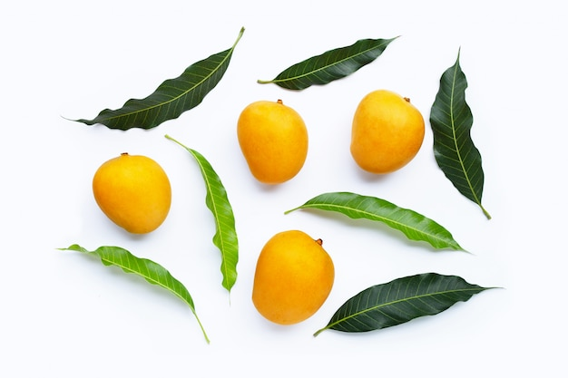 Frutas tropicais, manga.