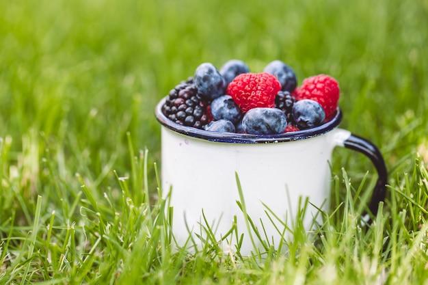 Frutos de baga de verão na grama verde.
