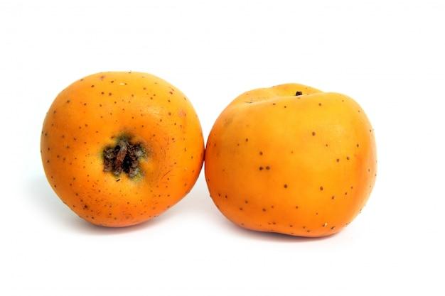 Frutos de inverno tecojote crataegus pubescens stipulacea