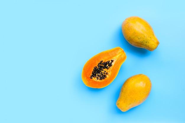 Frutos de mamão sobre fundo azul.