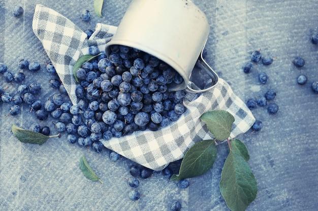 Frutos de prunus azuis caindo de um pequeno balde branco sobre fundo azul texturizado