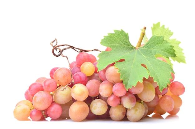 Frutos de uva isolados em fundo branco
